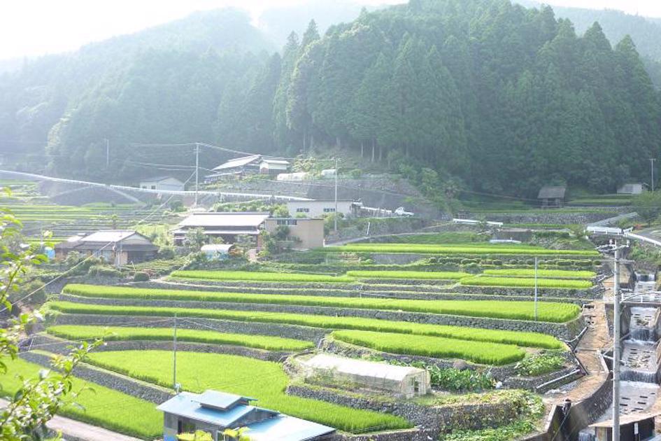 愛知県の画像