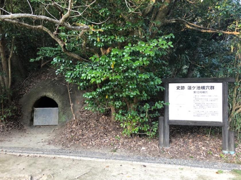 宮崎県の画像